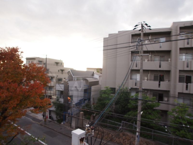 物件番号: 1025872183 六甲ヒルコート  神戸市灘区宮山町3丁目 2LDK マンション 画像12