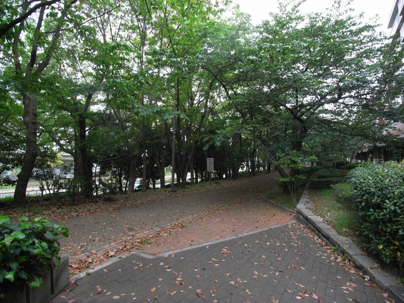 物件番号: 1025865743 エバーグリーンポートアイランド7号棟  神戸市中央区港島中町3丁目 2SLDK マンション 画像18