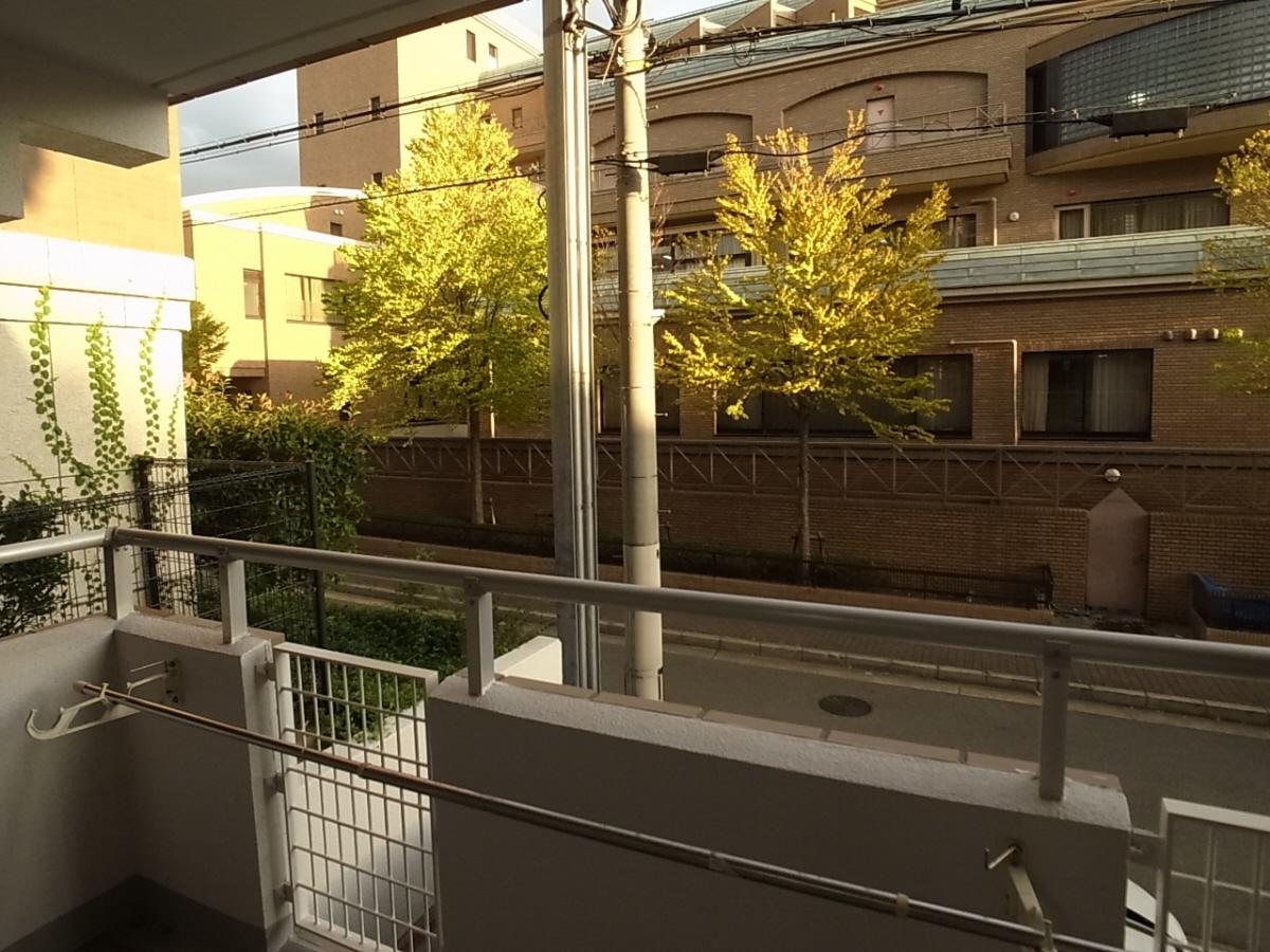 物件番号: 1025828627 ジュリアス中山手  神戸市中央区中山手通7丁目 2LDK マンション 画像14