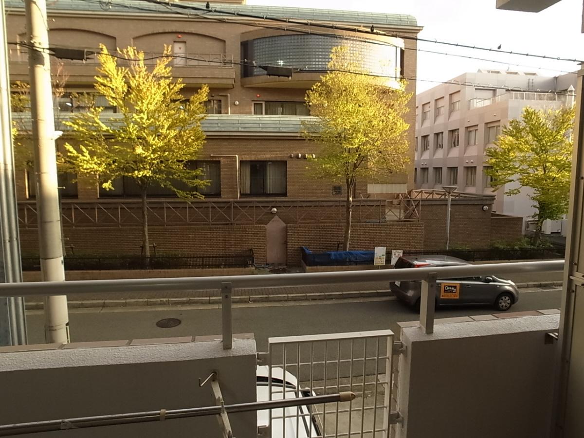 物件番号: 1025828627 ジュリアス中山手  神戸市中央区中山手通7丁目 2LDK マンション 画像15
