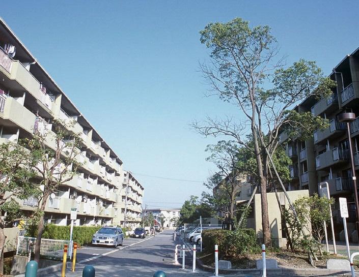 物件番号: 1025861376 横尾(UR)  神戸市須磨区横尾 3DK マンション 画像13