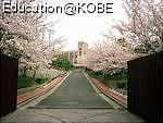 物件番号: 1025863541 ☆横尾 3号棟(UR)  神戸市須磨区横尾9丁目 3LDK マンション 画像21