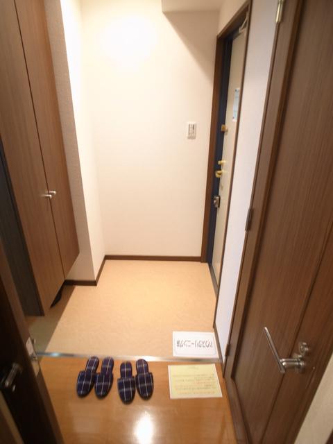 物件番号: 1025874288 ルミエール オクティア  神戸市中央区元町通3丁目 1LDK マンション 画像29